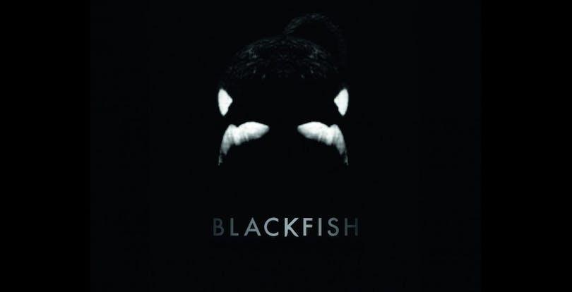 Poster för Blackfish