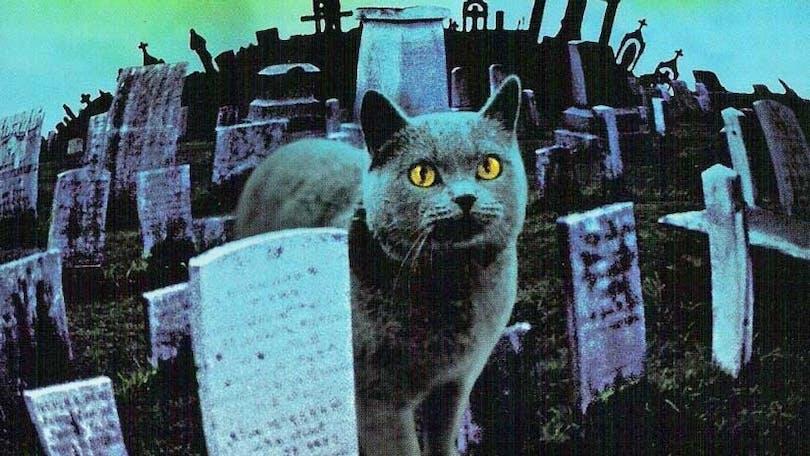 Bild från filmen Pet Sematary.