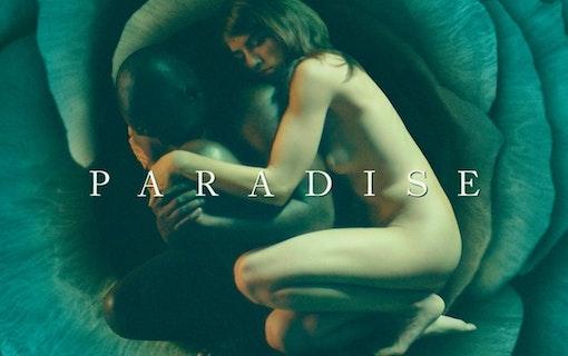 Paradissviten