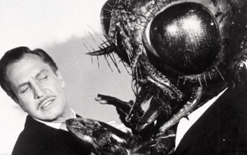Original mot Remake: The Fly (1958) vs The Fly (1986)