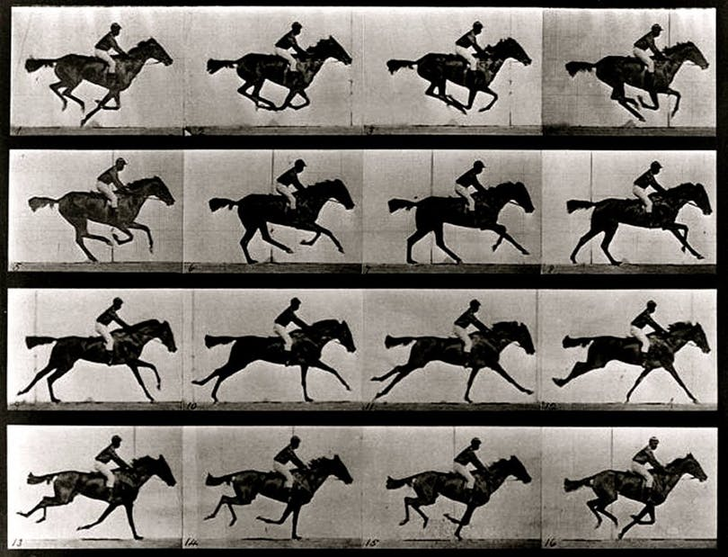 Muybridge film