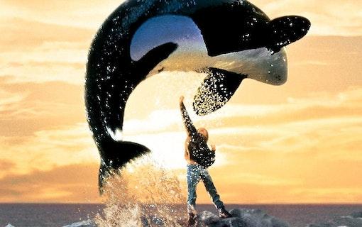 8 kända djur från filmhistorien
