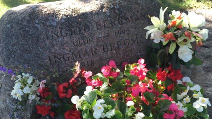 Ingrid och Ingmar Bergmans grav. Foto: Gustav Larsed