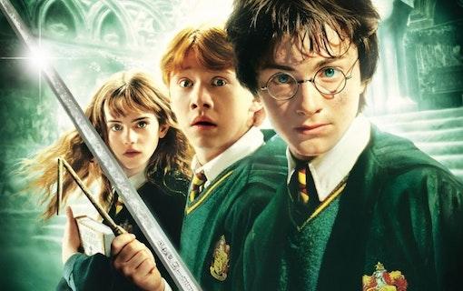 Möt Harry Potter-regissörernas andra verk