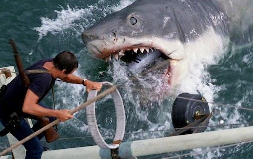 Filmserierna som spårade ur: Hajen
