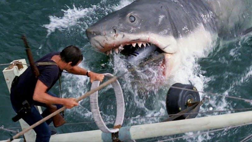 Hajen – En av de bästa filmerna på Amazon