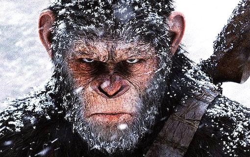 5 actionfilmer som har biopremiär i juli