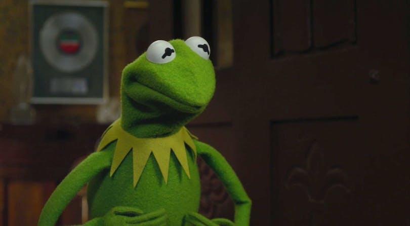 Bild på grodan Kermit.