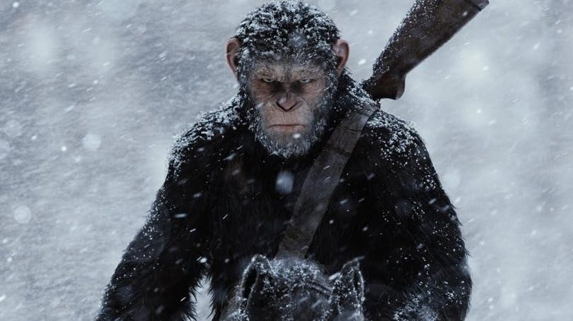 Från äventyret War of the planet of the apes