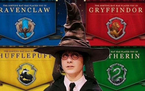 Harry Potter Quiz: Vilket Hogwarts-hem tillhör du?