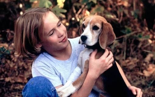 90-tals barnstjärnan Blake Heron har avlidit