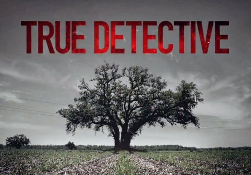 Stämningsfull bild på ett träd från serien