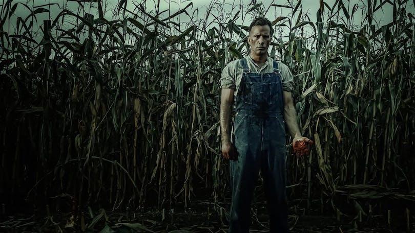 En bonde står ute på sitt majsfält.