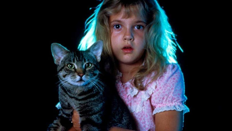 Drew Barrymore håller upp en katt i Stephen King-filmen Cat's Eye
