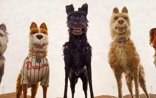 Wes Andersons Isle of Dogs hyllas på Filmfestivalen i Berlin
