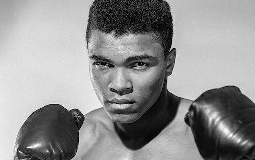 Morgan Freeman gör miniserie om Muhammad Ali