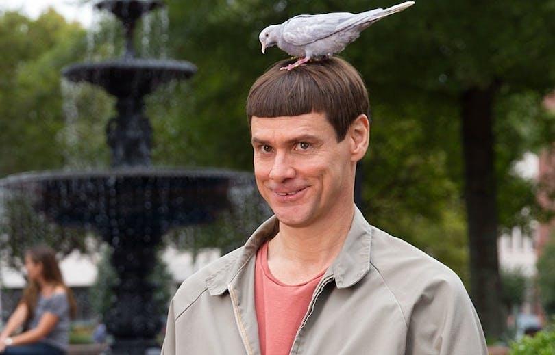 Jim Carrey med duva på huvudet.