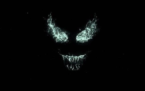 Förhoppningar och farhågor: Venom (2018)