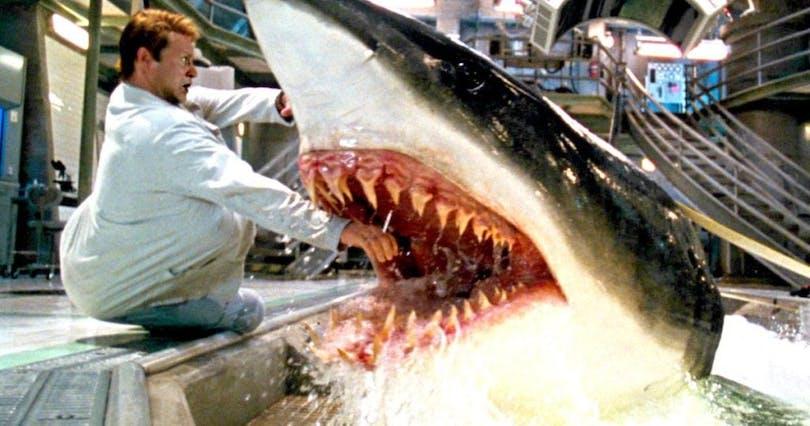 I hajfilmen Deep Blue Sea blir det en hel del hajattacker. Här försöker en haj bita av en forskares hand.
