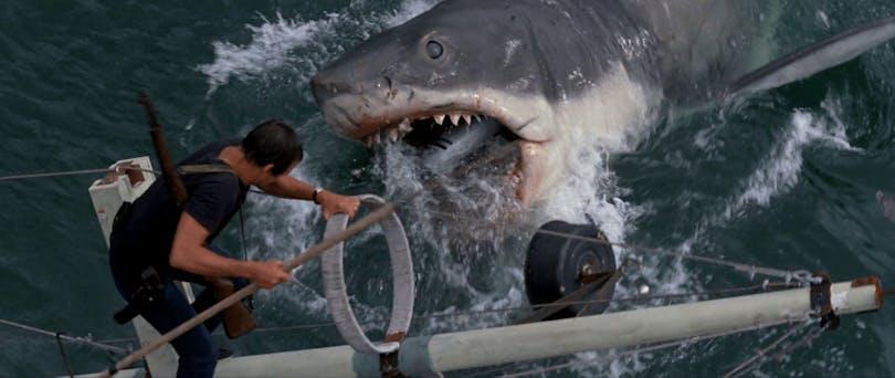 Hajen attackerar båten i Hajen.