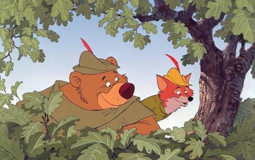 Robin Hood genom åren