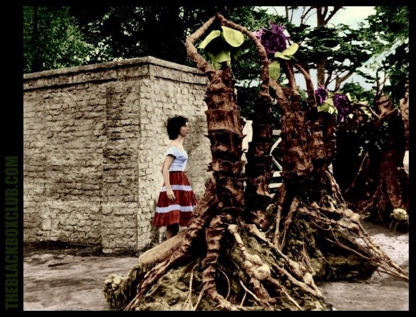 Onda träd i Triffidernas dag
