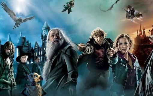 Så ser Harry Potter stjärnorna ut idag och detta sysslar de med