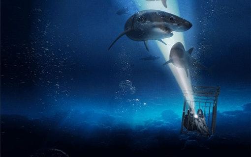 47 Meters down: Uncaged –sommarens stora hajfilm