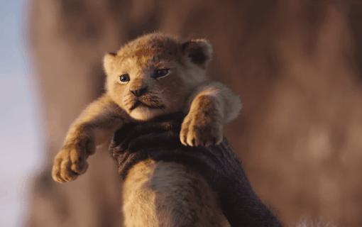 Första reaktionerna på nya Lejonkungen