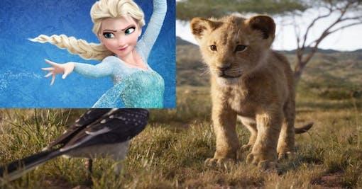 Lejonkungen passerar Frost –Mest sedda animerade filmen
