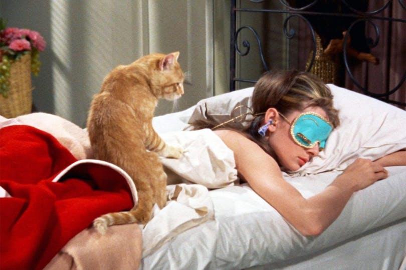 Katten i Frukost på Tiffany's.