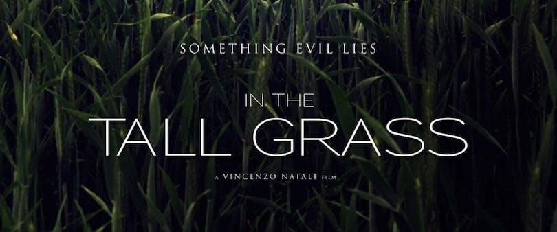 Affisch till In the Tall Grass