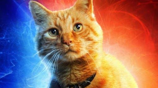 Lista pa kattfilmer