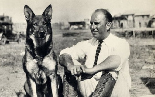Hunden som räddade Warner Bros återupplivas för ny film