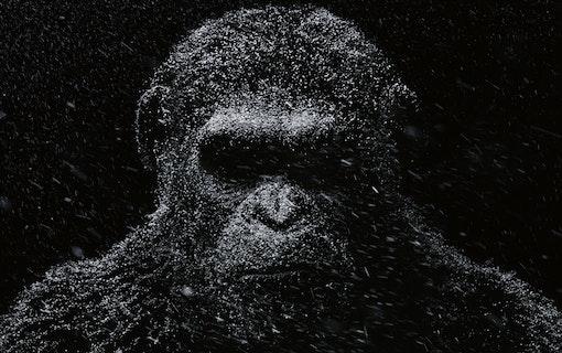 Apornas planet får reboot