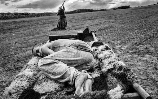 En bild på en ung pojke ur Václav Marhouls The Painted Bird, liggandes på en släpkärra. En Äldre dam syns sitta på en häst som drar kärran i bakgrunden.