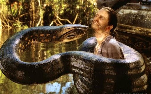 Ny Anaconda på väg
