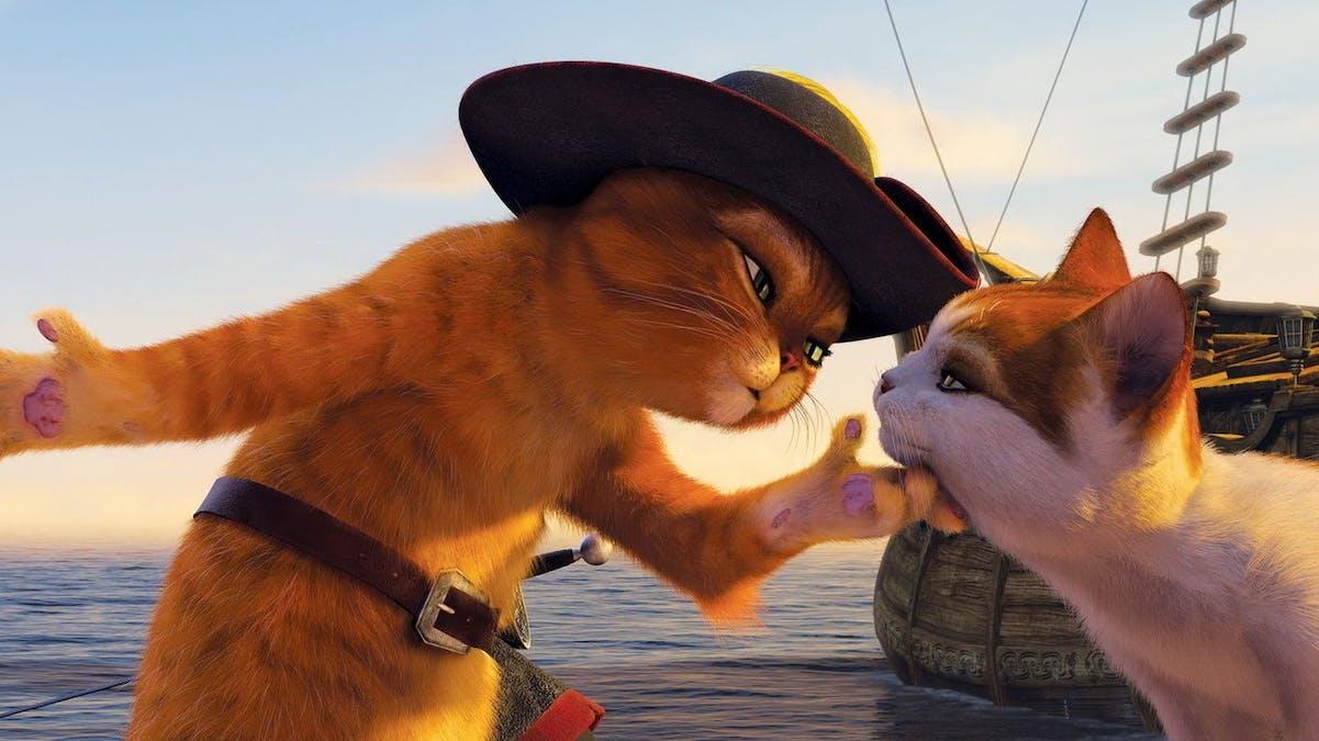 Kattfilmer