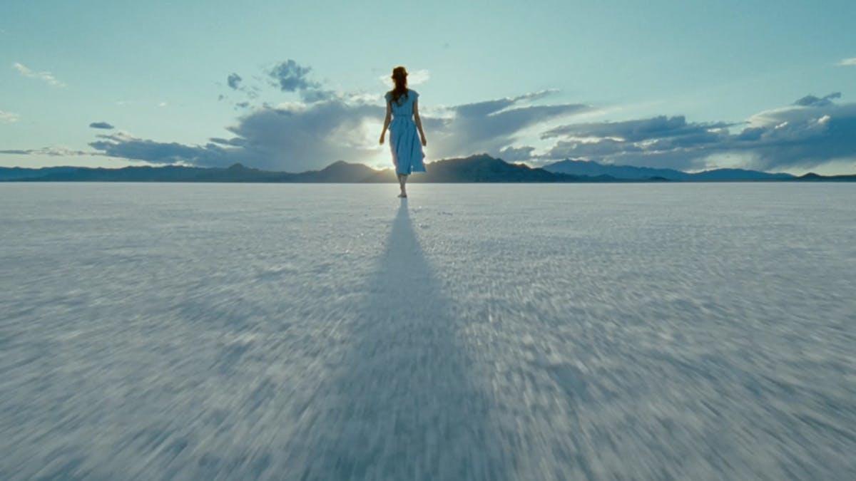 5 filmer som delade kritikerna och publiken