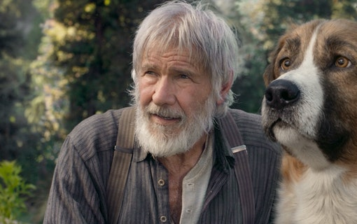 Harrison Ford och Buck i The Call of the Wild. Foto: 20th Century Studios
