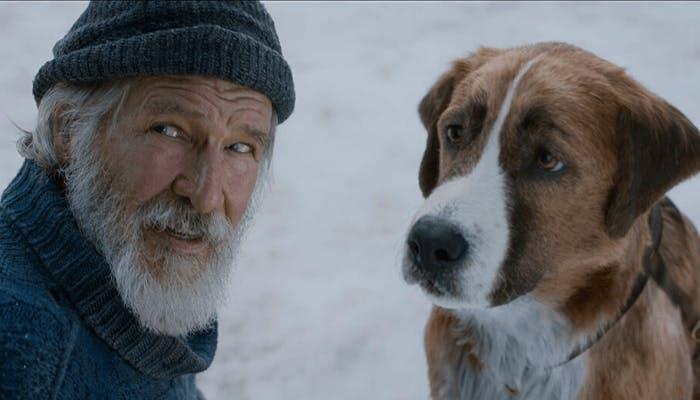 """Bild från """"Skriet från vildmarken"""" (2020)."""