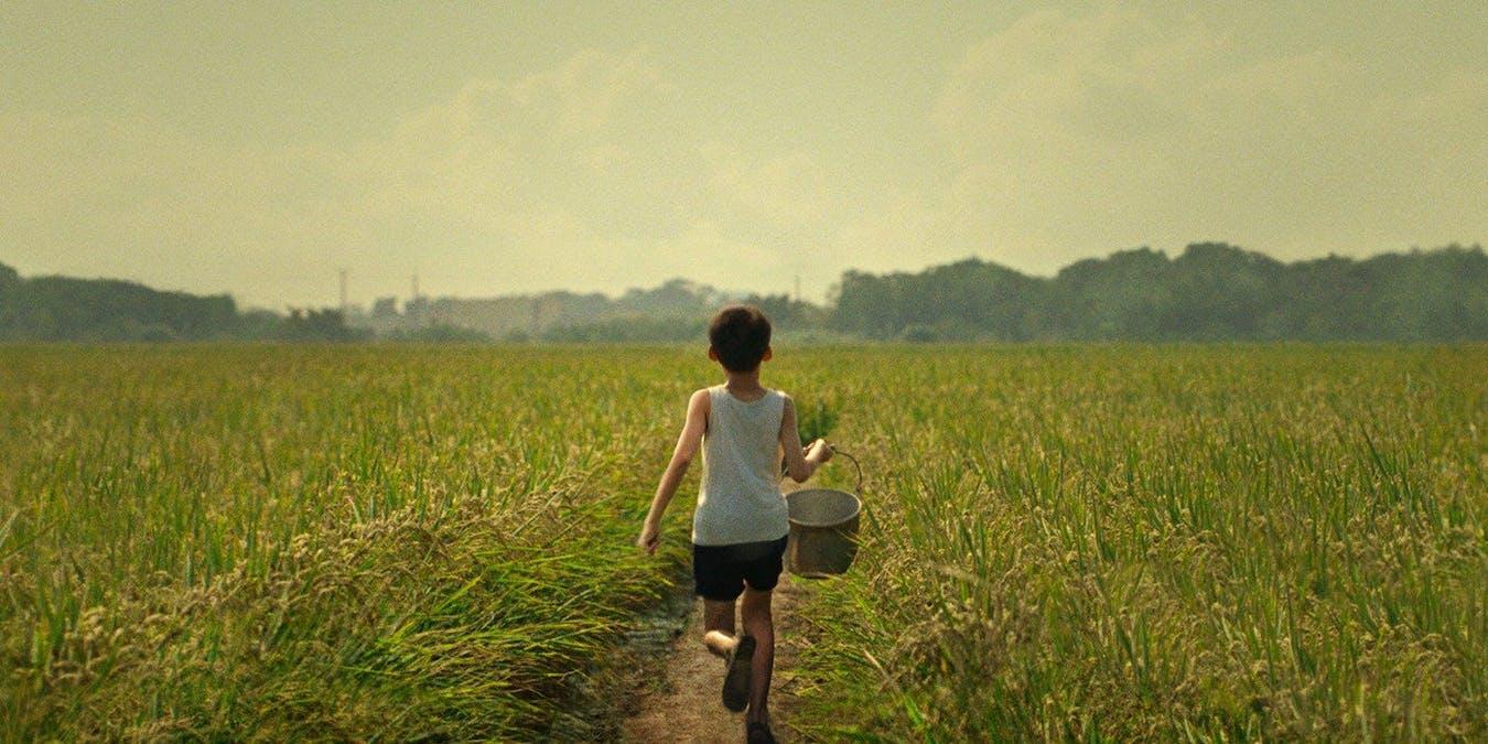 En liten pojke springer över ett gulgrönt fält med en hink i handen.