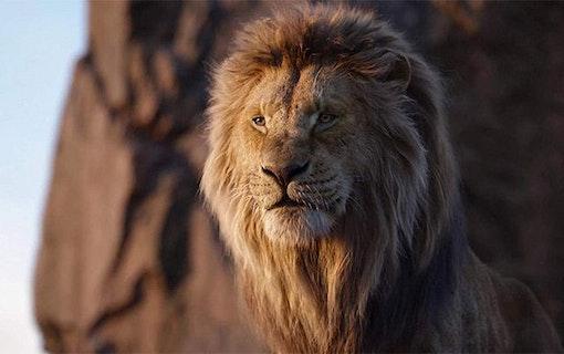 Bioåret 2019 – flest svenskar såg Lejonkungen