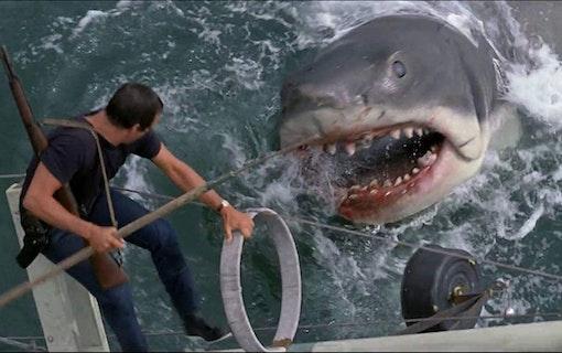 Roy Scheider som Brody tar upp kampen mot hajen. Foto: Universal Pictures.