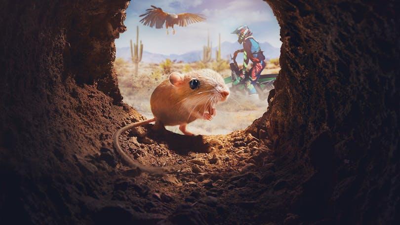 Tiny Creatures på Netflix