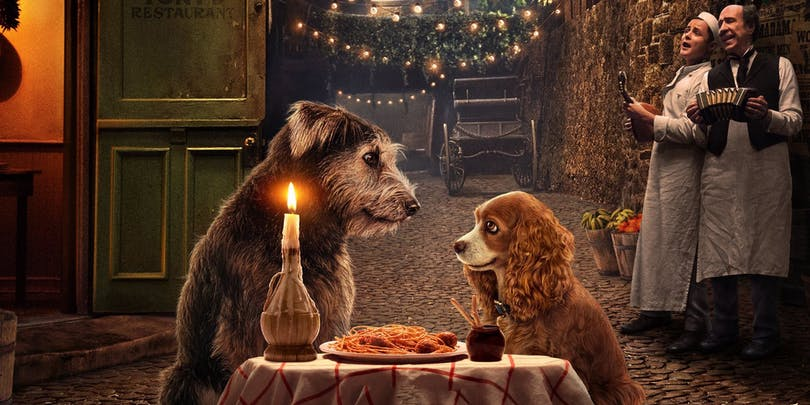 Lady and the Tramp – en av de bästa filmerna på Disney+
