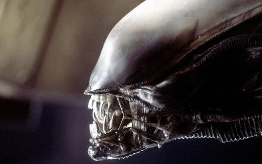 Bästa skräckfilmerna –enligt IMDb