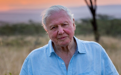 """Sir David Attenborough: """"Anitvaxxare är en ignorant minoritet"""""""