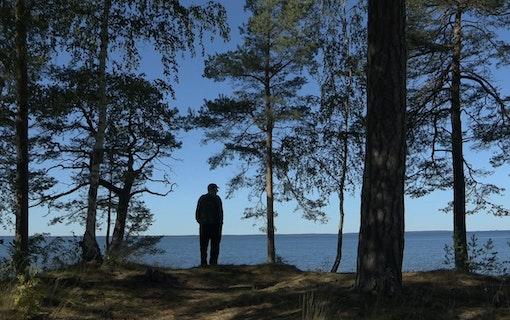 Stefan Jarl blickar ut över Vänern.