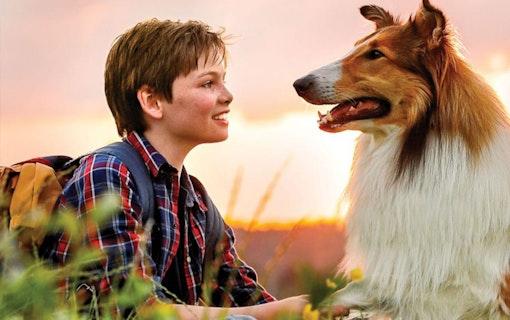 Lassie kommer hem